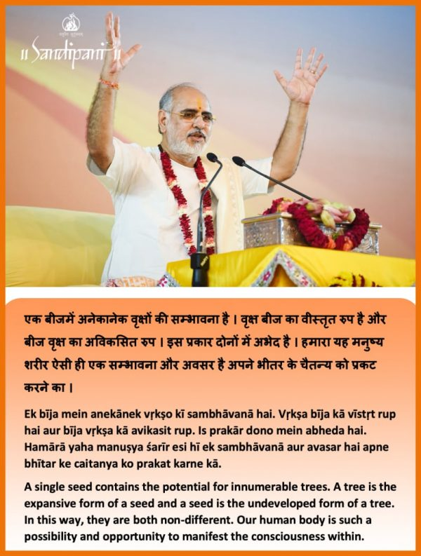 Weekly Sutra: The potential of a human body